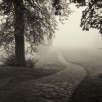 What to do when you can't find hope through the fog