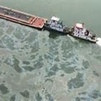 lesson from the oil spill